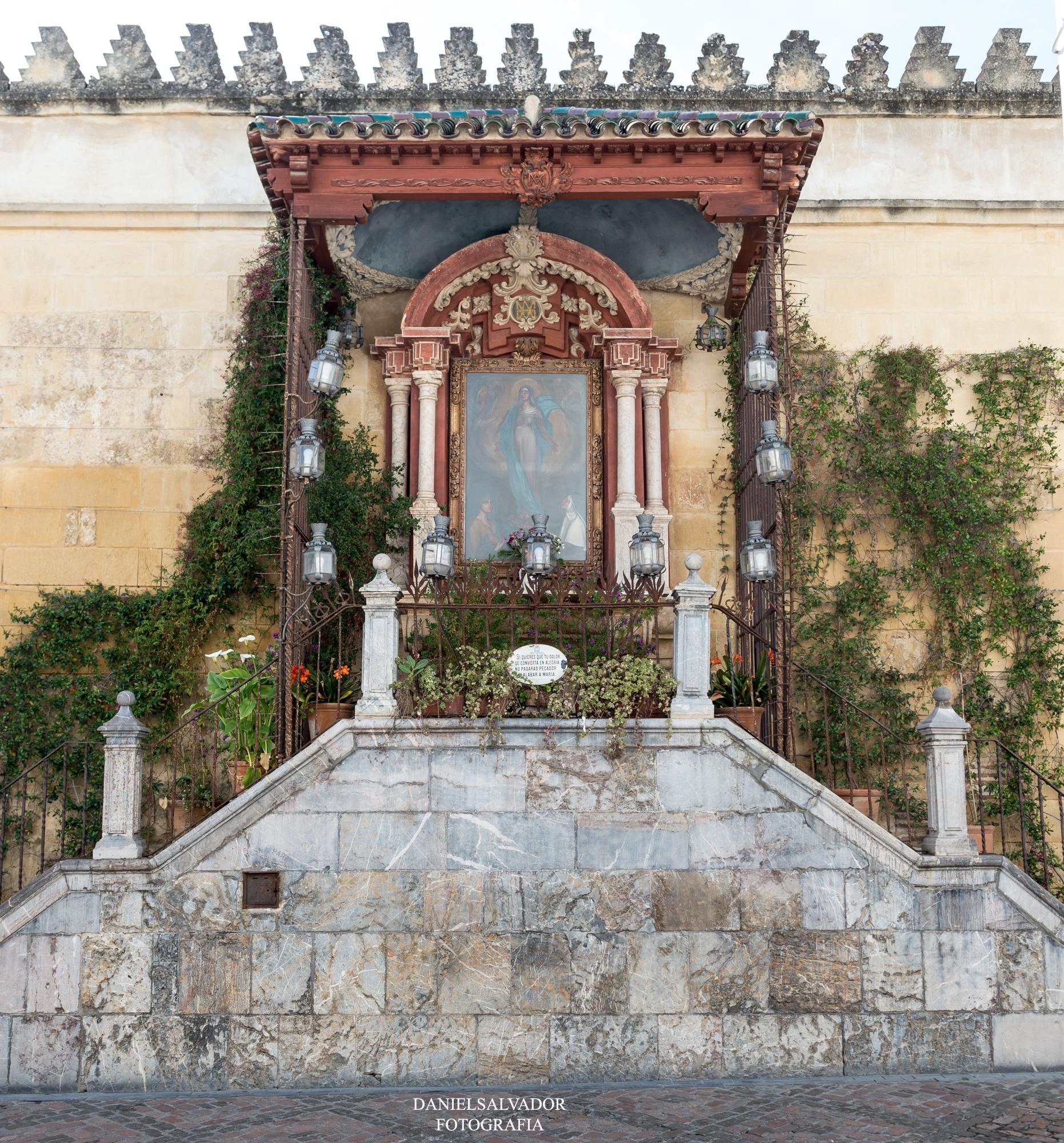 baja mezquita-10