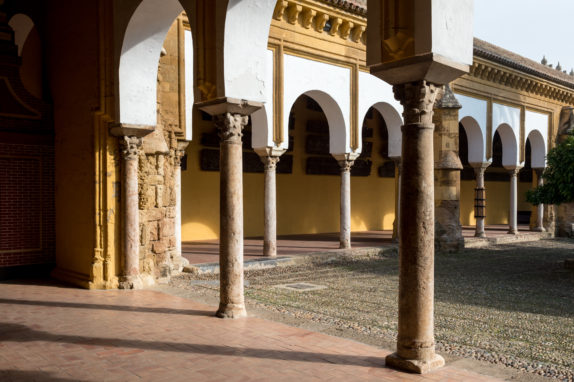 baja mezquita-111