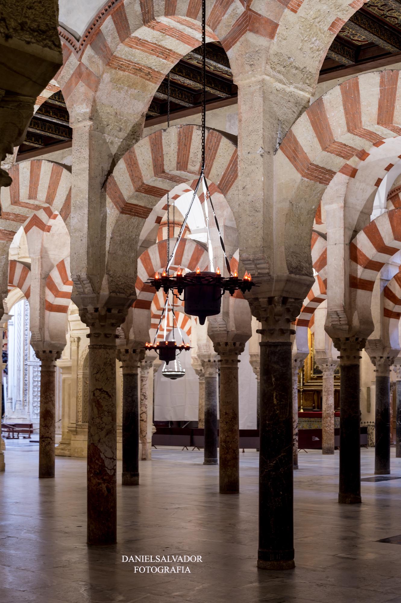 baja mezquita-53
