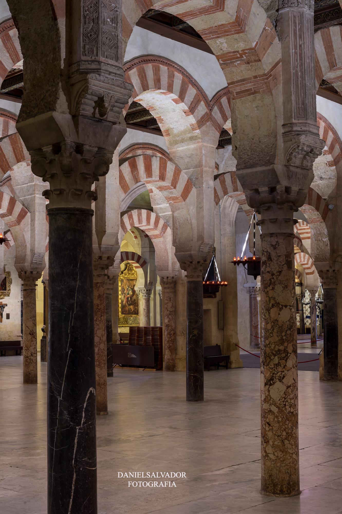 baja mezquita-54