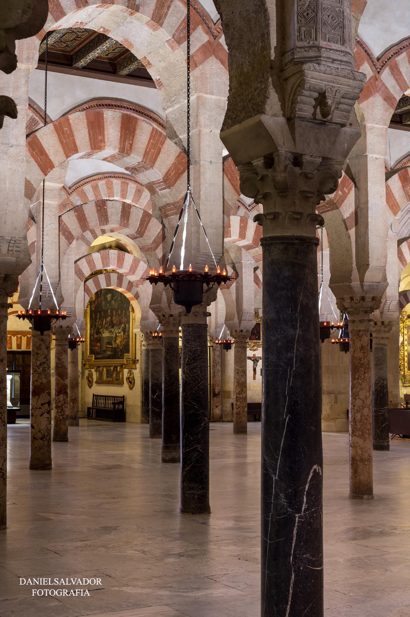 baja mezquita-55
