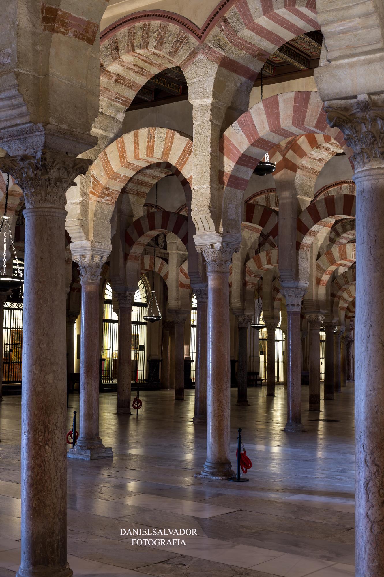 baja mezquita-61