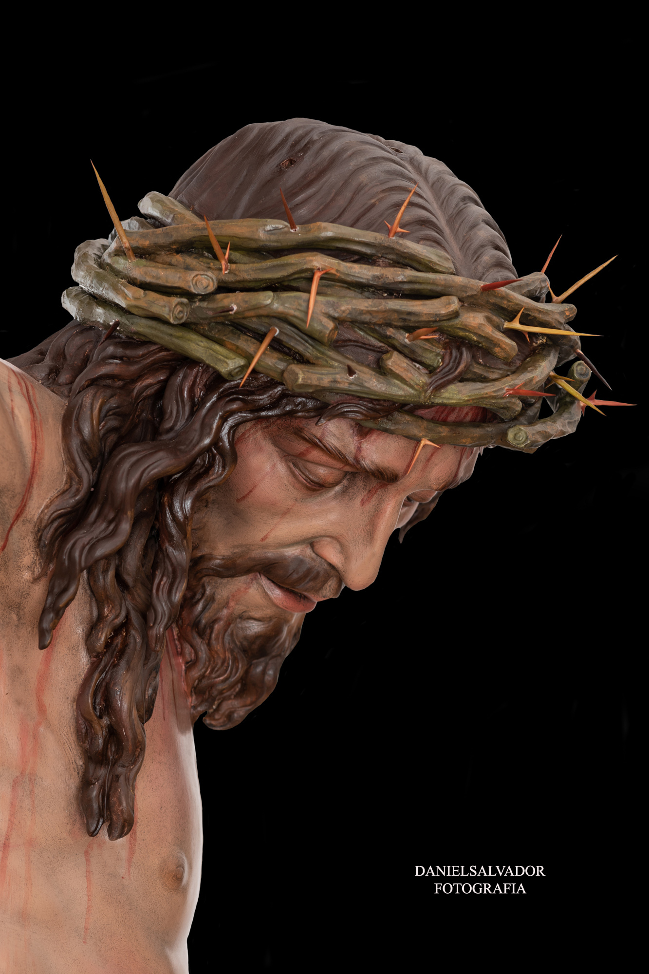santa cruz-4