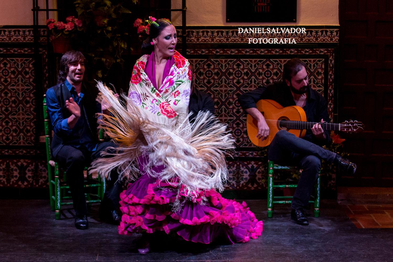 Flamenco daniel salvador-77