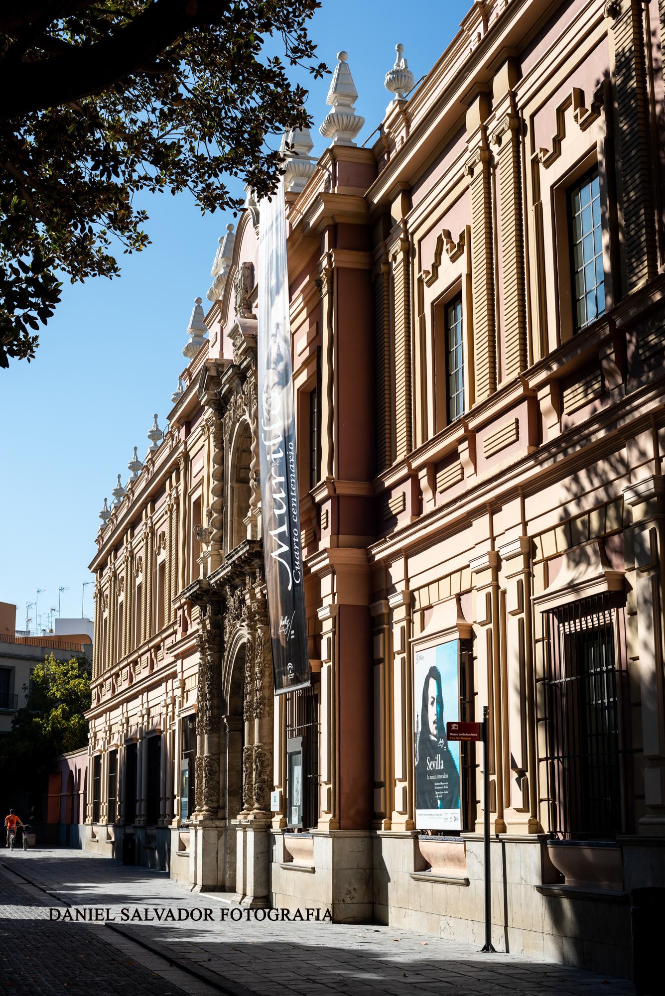 museo bellas artes sevilla-4