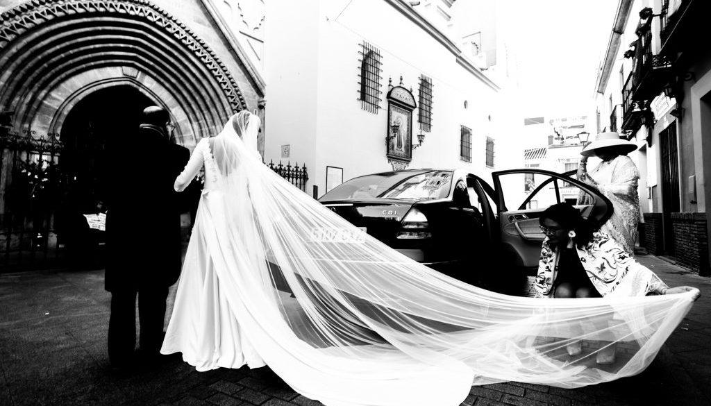 boda web-14