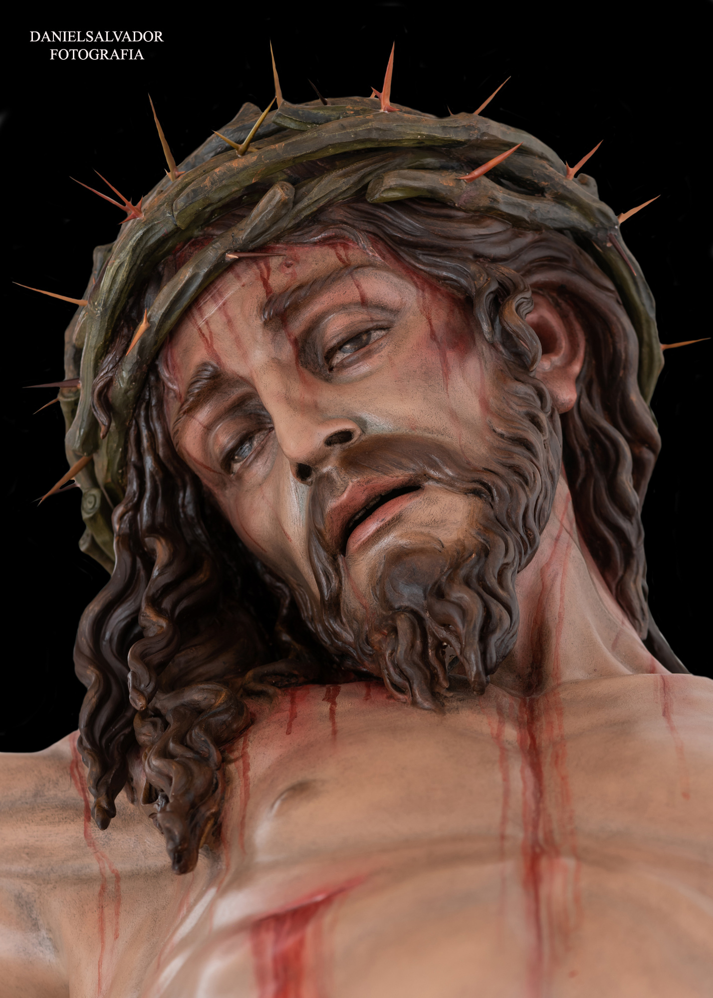 santa cruz-10